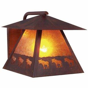 Steel Partners Band of Bears 1-Light Outdoor Wall Lantern