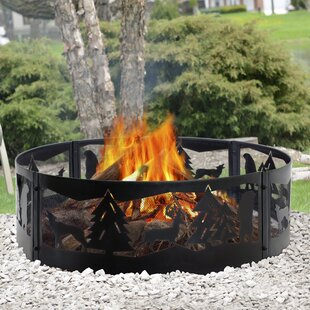 Pleasant Hearth Steel Wood Burning Fire r..