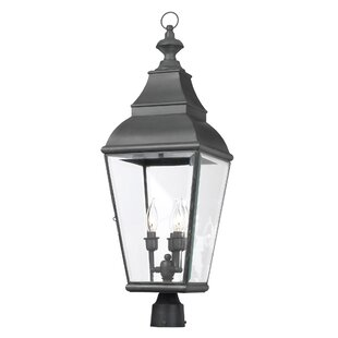 Darby Home Co Greenspan 3-Light Lantern Head