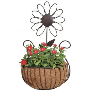 Daisy Iron Wall Planter