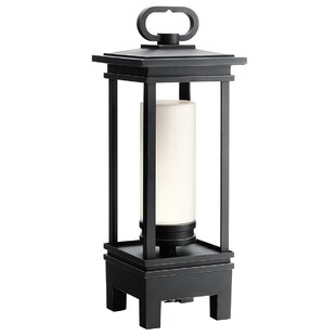 Chichica Portable Black Battery Powered Bluetooth LED Outdoor Lantern By Rosalind Wheeler