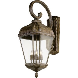 Goldsberry Wall Lantern by Astoria Grand