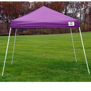 12 Ft. W x 12 Ft. D Metal Pop-Up Canopy by ShelterLogic