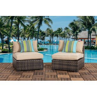 Harvey Outdoor Patio Chair with Cushions (Set of 2)