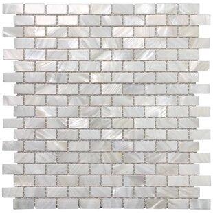 Inch Ceramic Tile Wayfair - 2 inch by 2 inch ceramic tiles