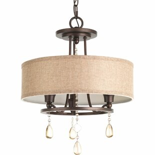 Surrency 3-Light Semi-Flush Mount by Darby Home Co
