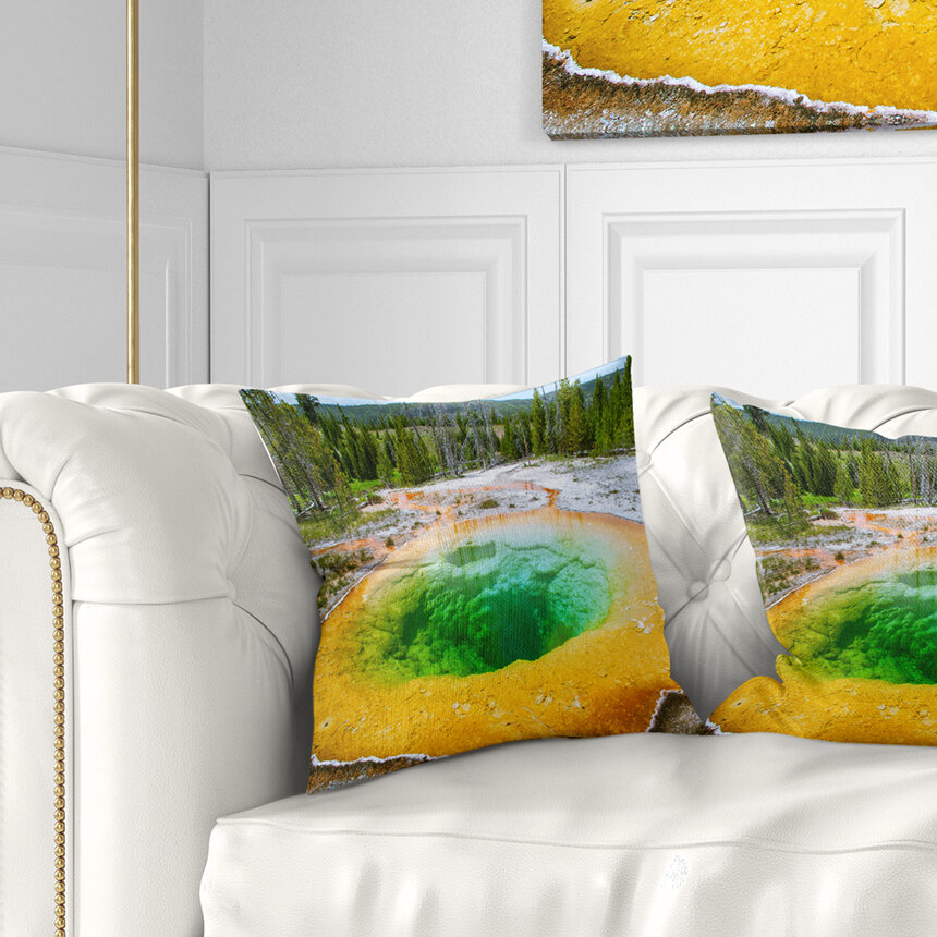 East Urban Home Landscape Bright Morning Glory Pool Pillow Wayfair