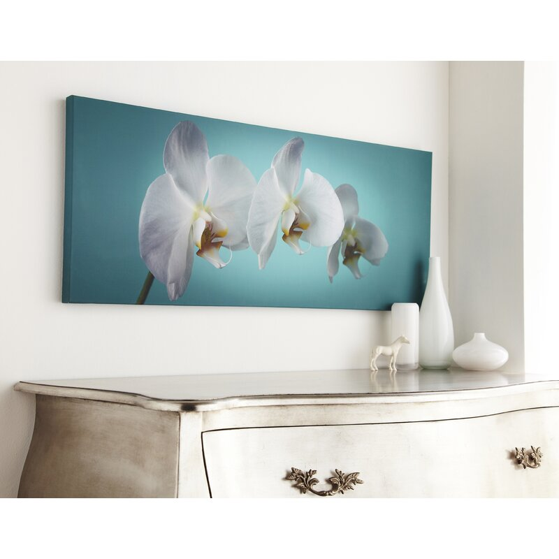 Teal Orchid Photographic Print On Wrapped Canvas Reviews Allmodern
