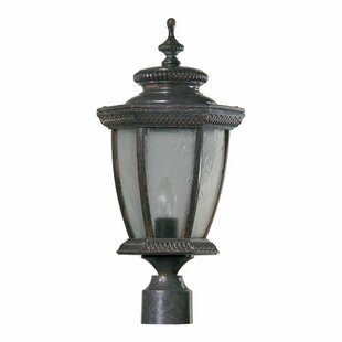 Fleur De Lis Living Winn 1-Light Lantern Head