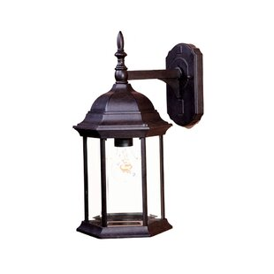 Big Save Pritzker 1-Light Outdoor Wall Lantern By Charlton Home