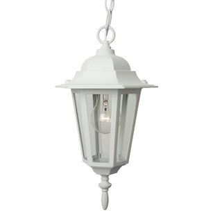 Buy luxury Oakhill Traditional 1-Light Outdoor Hanging Lantern By Charlton Home