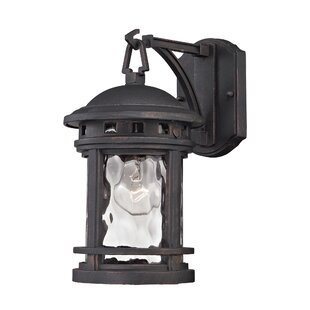 Reviews Binette 1-Light Outdoor Wall Lantern By Williston Forge