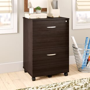 Ebern Designs Bayswater 2 Drawer Mobile V..