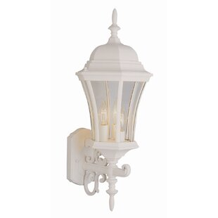 Broomfield 3-Light Outdoor Sconce by Charlton Home