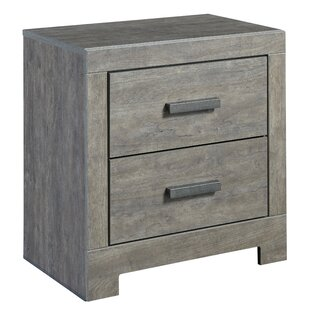 Beachcrest Home Rosen 2 Drawer Nightstand