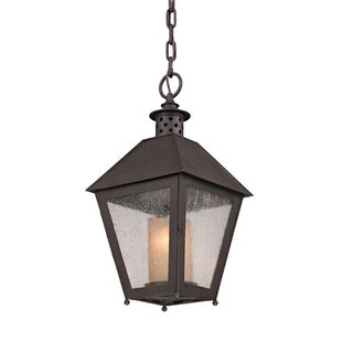 Longshore Tides Dinerstein 1-Light Outdoor Hanging Lantern