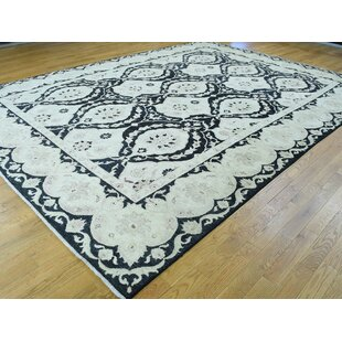 One-of-a-Kind Cerrone Peshawar With Moughal Design Handwoven Black Wool Area Rug Isabelline