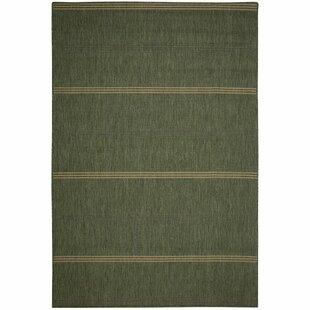Arya Green Stripe Indoor/Outdoor Area Rug