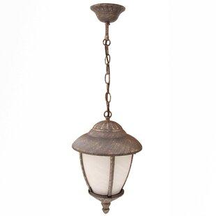 Carntall 1-Light Hanging Lantern Image