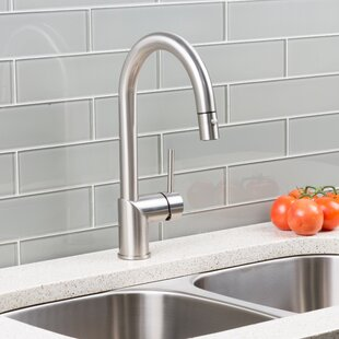 Hahn Deck Pull Down Single Handle Kitchen Faucet
