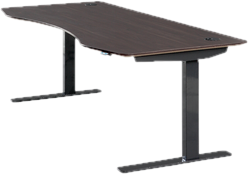 Standing & Height-Adjustable Desks