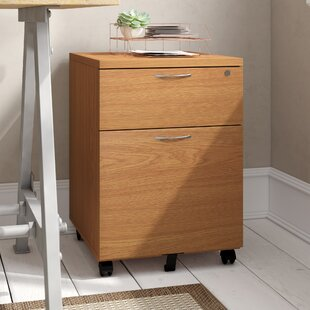 2 Drawer Filing Cabinet By Mercury Row