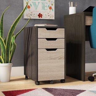Beideman 3-Drawer Mobile Vertical Filing Cabinet by Ebern Designs Cool