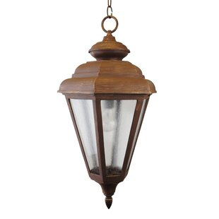 Compare Fiorillo 1500 Series 1-Light Outdoor Hanging Lantern By Darby Home Co