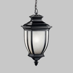 Best Choices Greenview 1-Light Outdoor Hanging Lantern By Three Posts