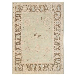 Vegetable Dye Hand-Knotted Light Green Area Rug ByHerat Oriental