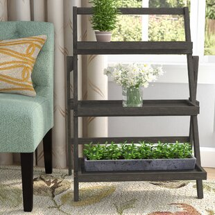 Fenimore Indoor Multi-Tiered Plant Stand by Charlton Home
