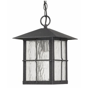 Bloomsbury Market Hogans Medium 1-Light Outdoor Hanging Lantern