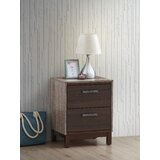 Tocco 2 Drawer Nightstand in Brown by Union Rustic