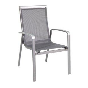 Brisy Folding Patio Dining Chair (Set of 4)