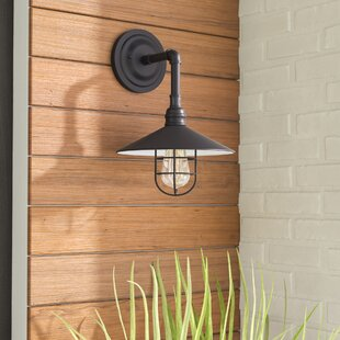 Mineo 1-Light Outdoor Sconce by Williston Forge