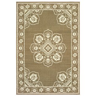 Salerno Floral Medallion Tan/Ivory Indoor/Outdoor Area Rug