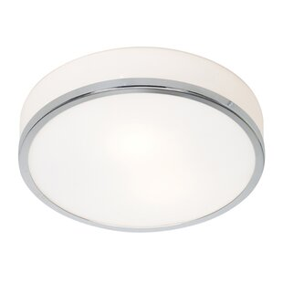 Read Reviews Josahua 1-Light Outdoor Flush Mount By Orren Ellis