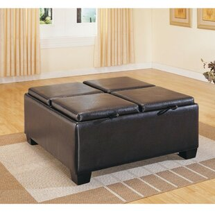 Hasty Upholstered Storage Otto..