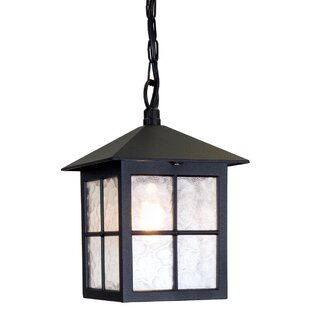 Charlton Home Popovich 1-Light Outdoor Hanging Lantern