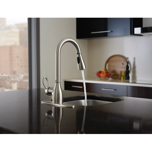 Beau Kleo Single Handle Kitchen Faucet With Reflex™ And Duralock™