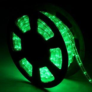 Green Rope Lights Image
