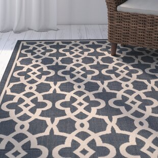 Ceri Navy/Beige Indoor/Outdoor Area Rug