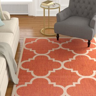 Places to buy  Larson Natural/Terracotta Indoor/Outdoor Area Rug Best Deals