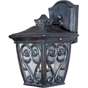 Shop For Isaacson 1-Light Outdoor Wall Lantern By Astoria Grand