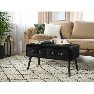 Dalrymple Coffee Table with Storage by Mercer41