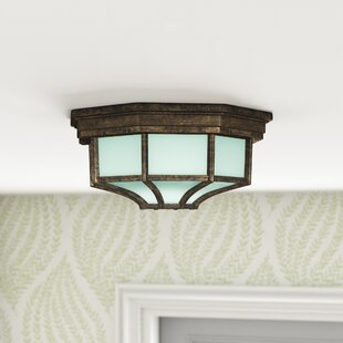 Fleur De Lis Living Dario Outdoor Flush Mount