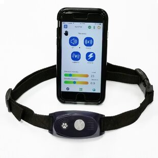 Trainer High Tech Bluefang Complete Electronic Dog Fence Bark Contr Activ Mon