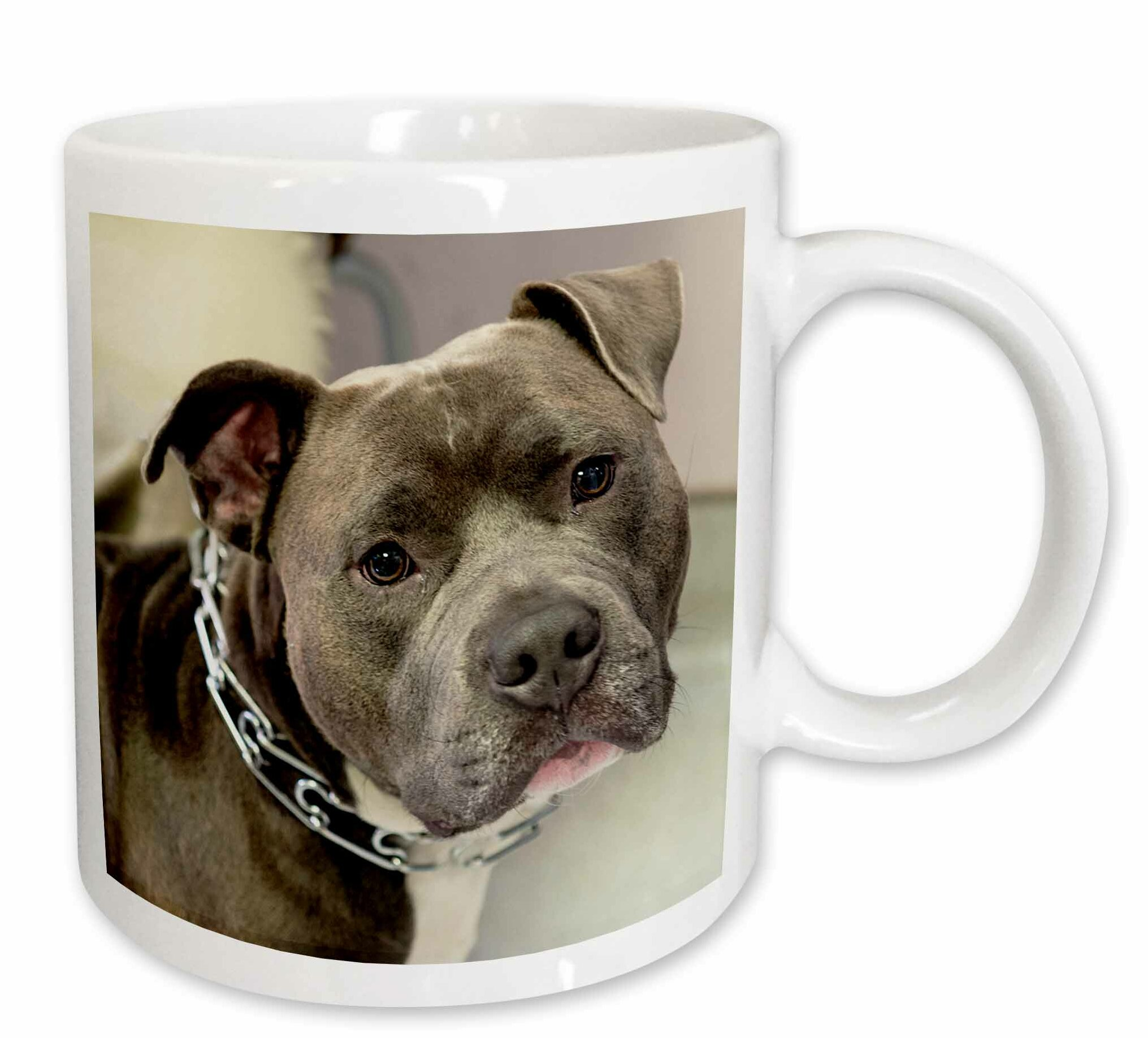 Pitbull With Chain Collar Coffee Mug