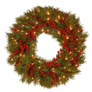 decorative pre lit valley pine wreath with 50 battery operated white led lights by the holiday aisle
