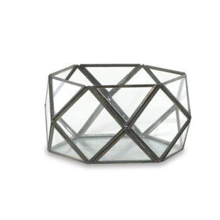 Review Talni Glass Terrarium